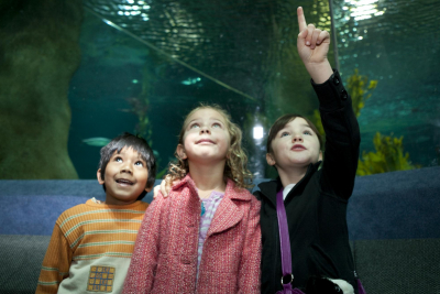 Celebrate Children's Day with free entry for kids