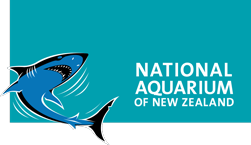 National Aquarium of New Zealand